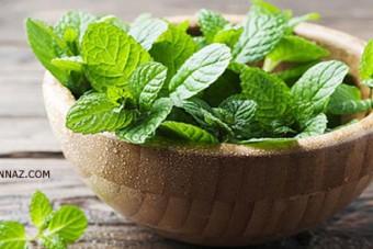 اجرای حکم اعدام کشتی گیر اندیمشکی